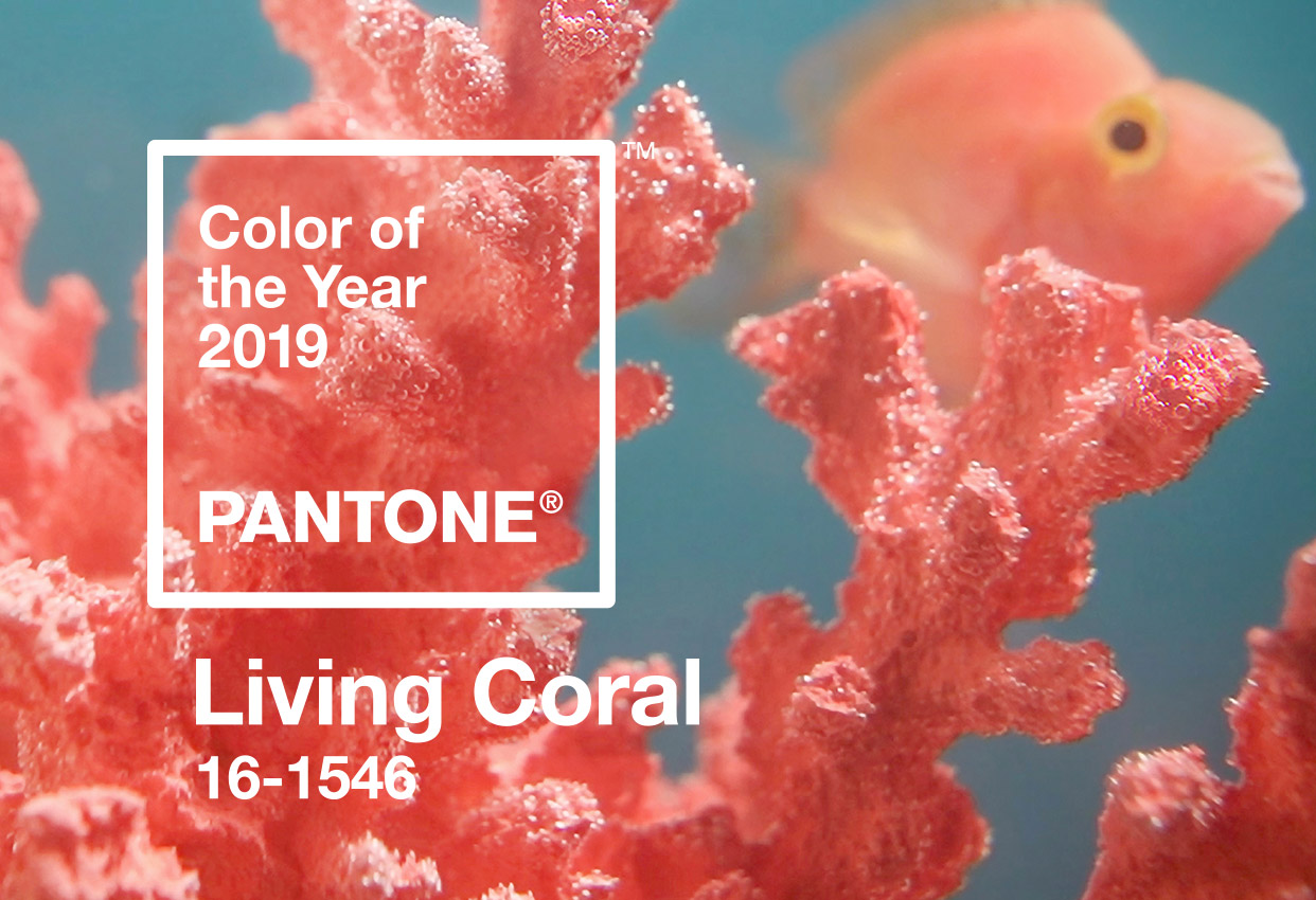 PANTONE® Color of the Year: Living Coral